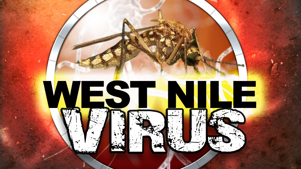 west nile 2_1472759836111.jpg