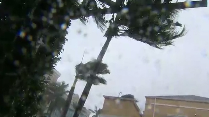 hurricane_naples_1505072463100.jpg