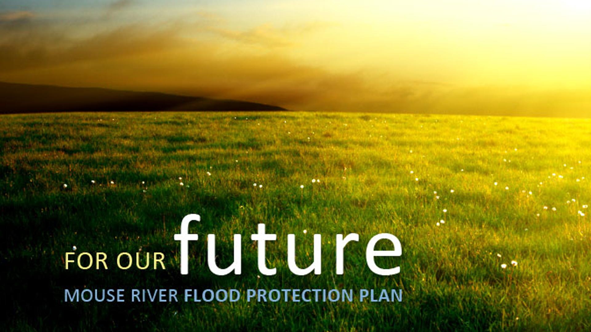 1050 Flood Protection Plan_1517871246533.png.jpg