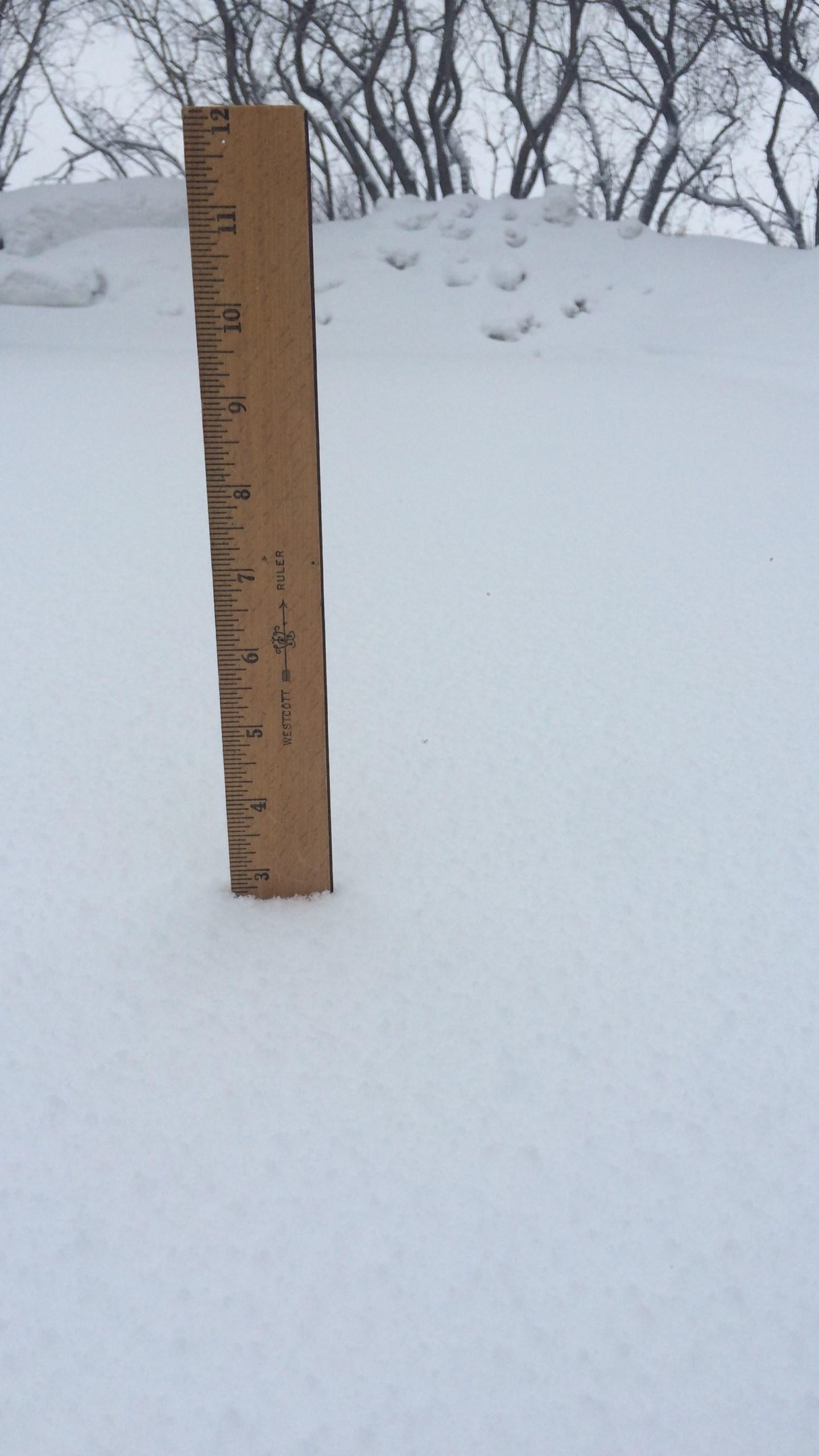 snow in Bismarck_1523035549741.JPG.jpg