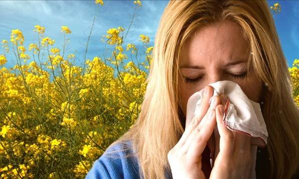 allergies_mgn_640x360_80502B00-EVGZV_1529072292879.jpg