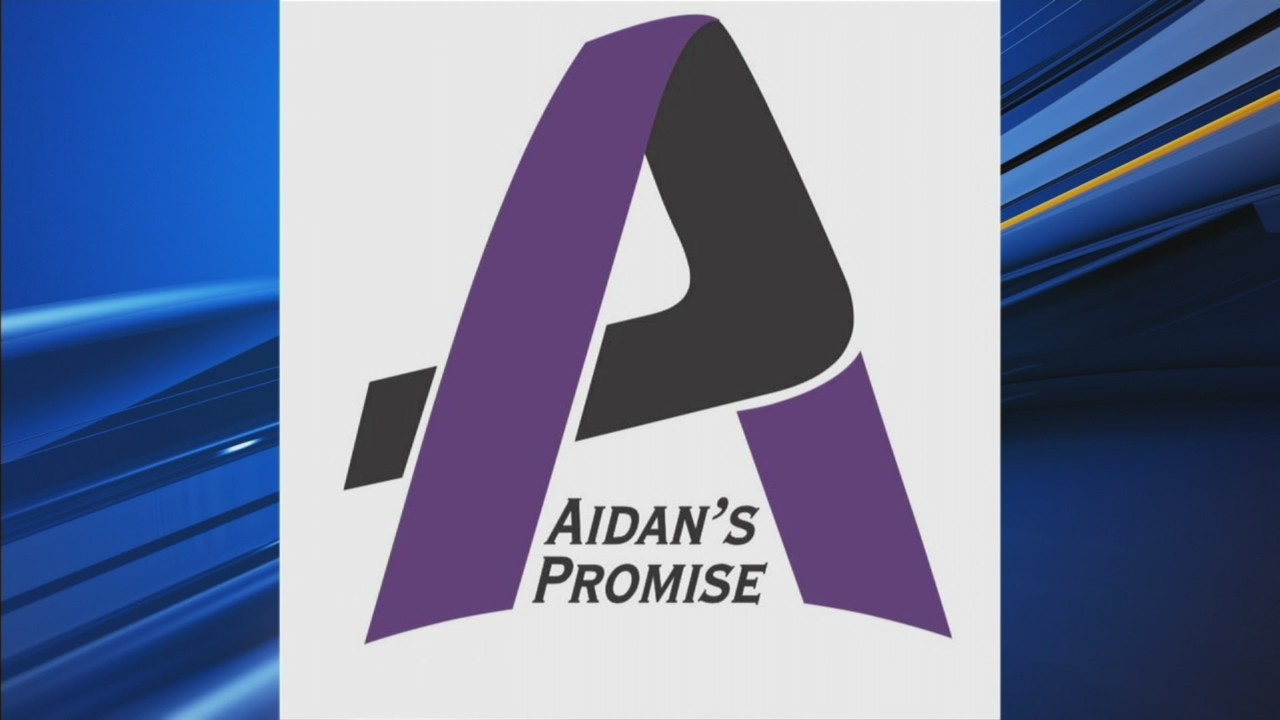Aidan's Promise