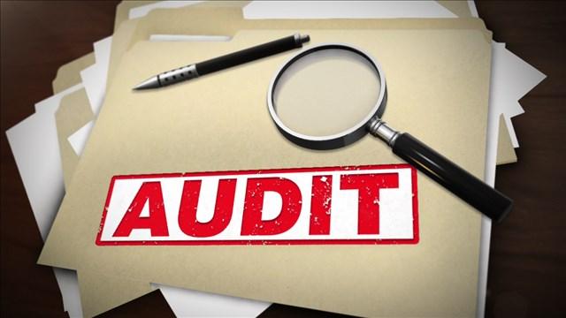 audit_mgn_640x360_60429C00-FLUCO_1551132916735.jpg