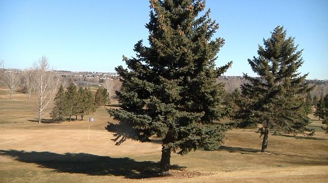 golf courses_1554758016674.JPG.jpg