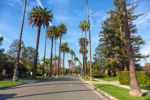 Beverly Hills street with palm trees, Los Angeles_1557341937369