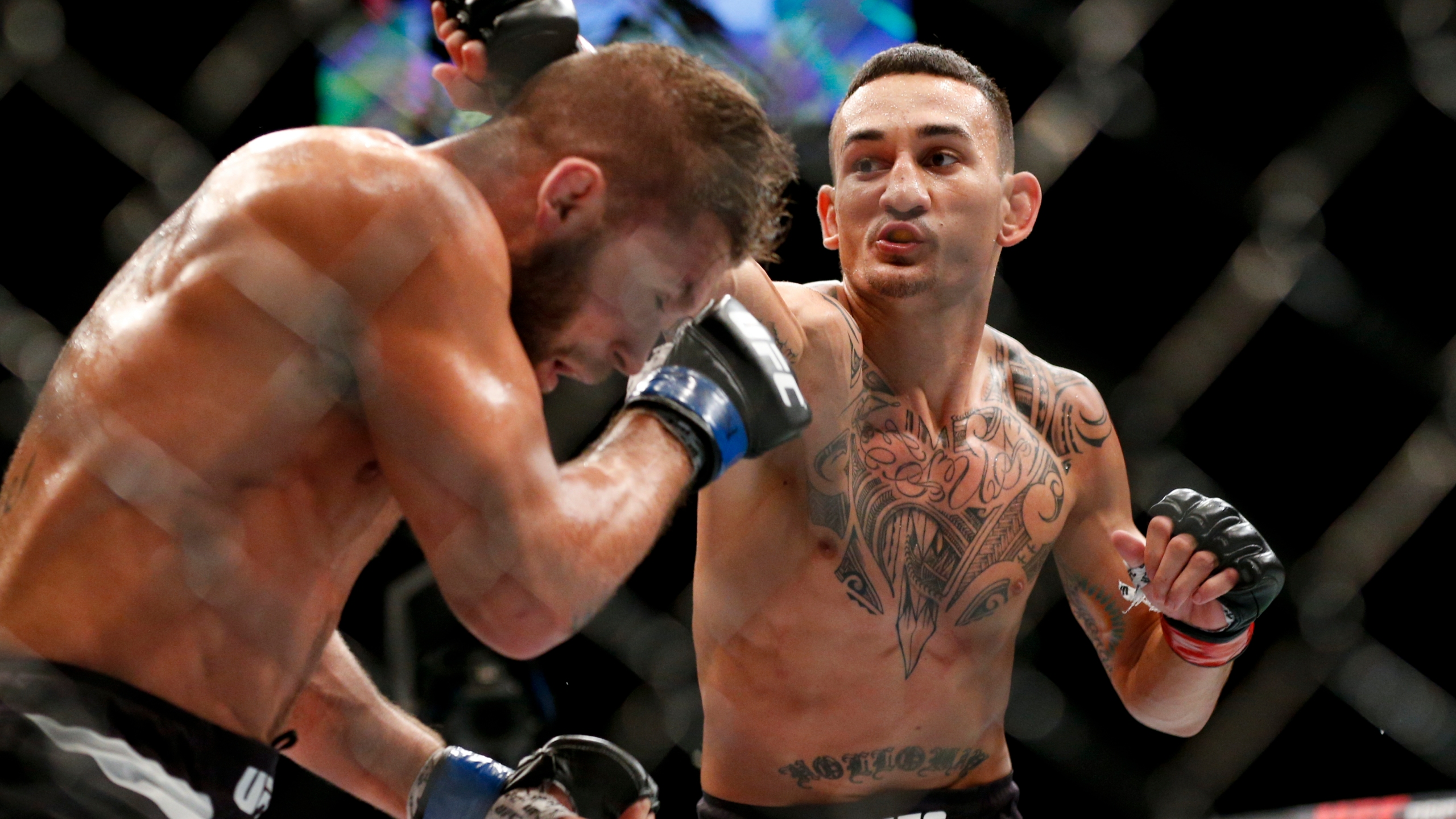 Max Holloway, Jeremy Stephens